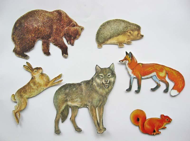 Тварини наших лісів зображення зві р