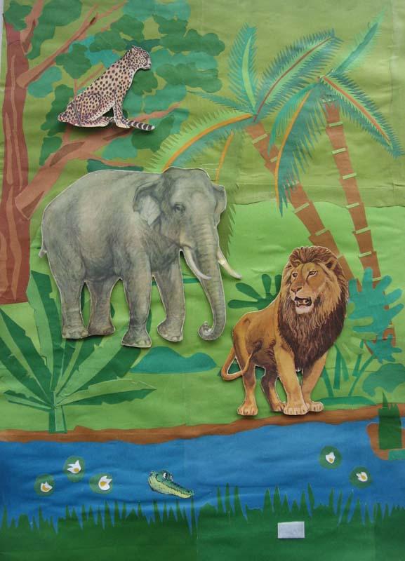 Тварини тропічних лі с ів тварини